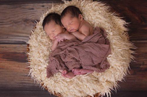 twins-1628843_1920